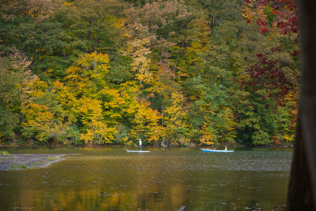 Laurel Hill State Park Kayaking and Paddle Boarding